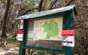 Catching Tadpoles at Walnut Creek Park