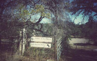 Little Buckaroo Ranch in Dripping Springs