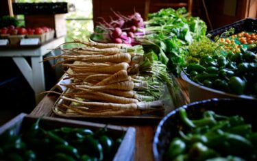 Market Days at Springdale Farm in East Austin