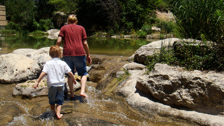 austin nature science center zilker park kids children