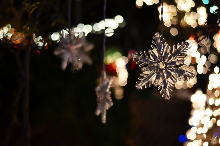 Escape Into Austin's Big Back Yard This Christmas With A Hill Country Lights Tour