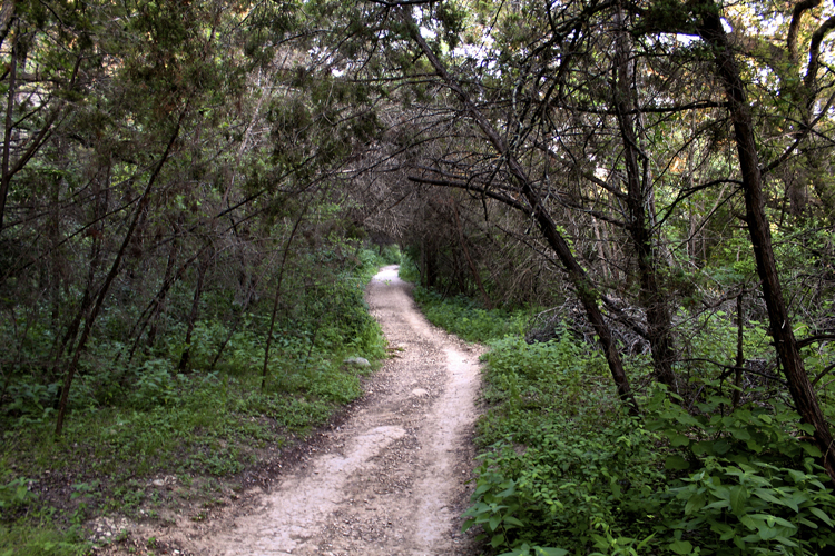 barton creek greenbelt bull trail loop austin texas goodwater georgetown pedernales falls mckinney nature preserve wilderness wildlife westcave wild basin