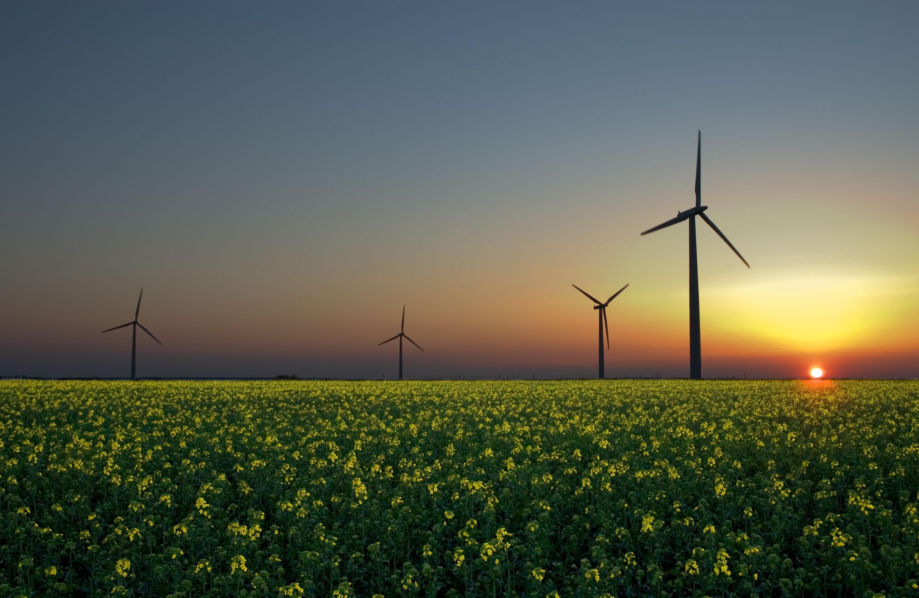 "<I>Photo: <a href=""http://en.wikipedia.org/wiki/Renewable_energy"" target=""_blank"">Wikimedia Commons</a>.</I>"