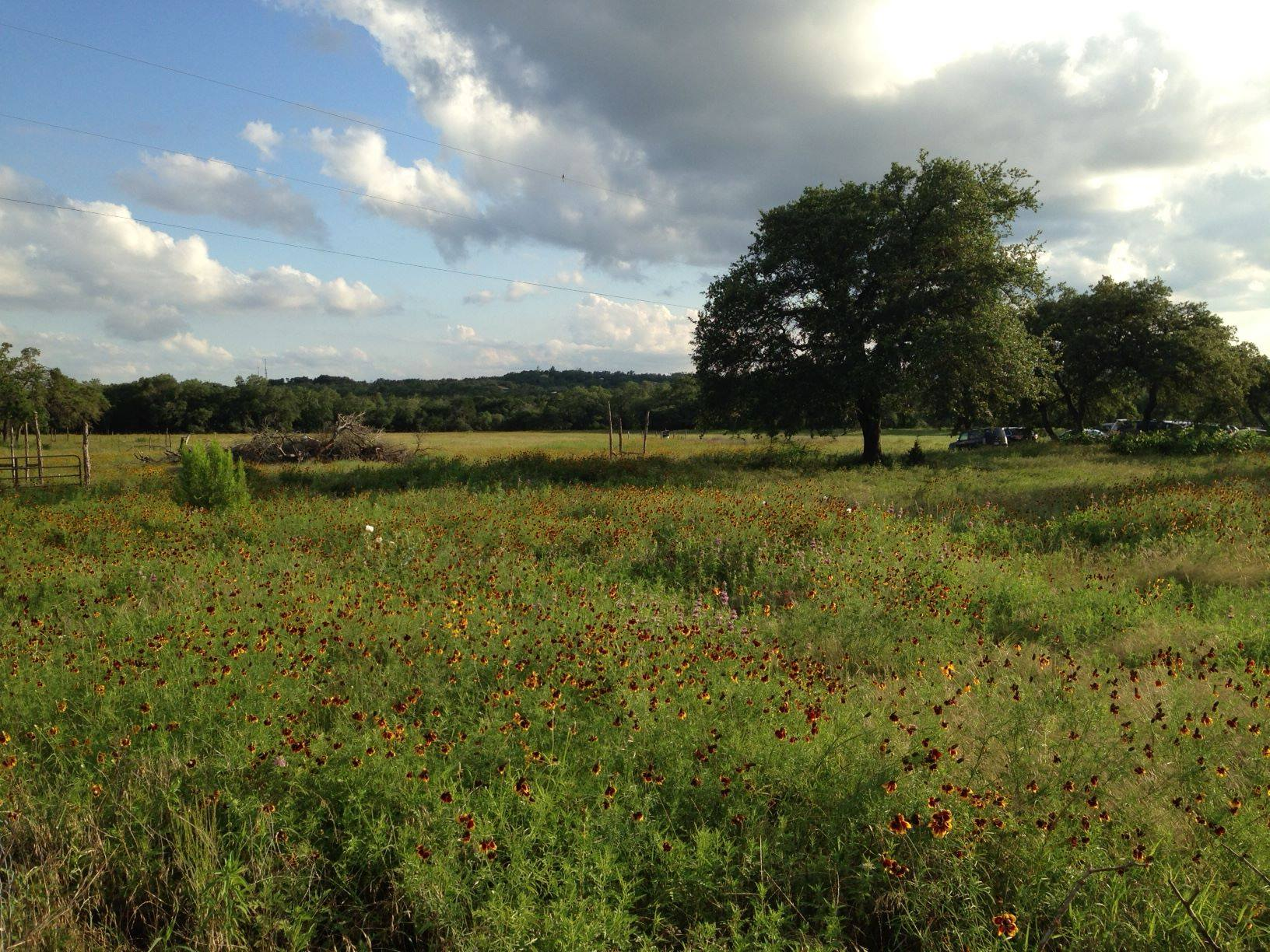Jester King Buys 58 Acres To Protect Land From Developers