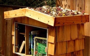Little Austin Libraries are Being Burglarized by a Real Book Thief