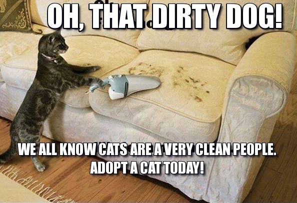 frabz-Oh-that-dirty-dog-We-all-know-cats-are-a-very-clean-people-Adopt-7cce10