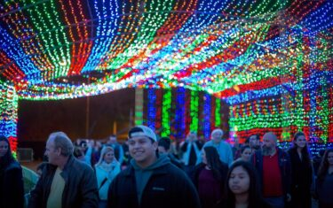Navigating the Austin Trail of Lights 2018 — We've Got Tickets to Give Away!!