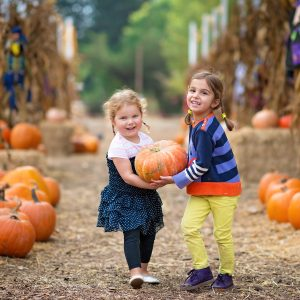 Barton Hill Farm's Fall Festival & Pumpkin Patch