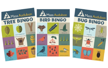 Get Your Kids Exploring The Outdoors With Nature Bingo