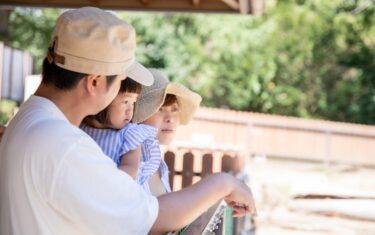 Family Fun Day Idea: Make It A Zoo Day