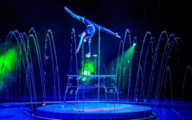 Cirque Italia Water Circus Is Coming And We've Got Free Tickets!
