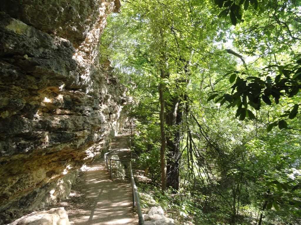 Growing Up Austin - Austin Kids Hike - Shoal Creek