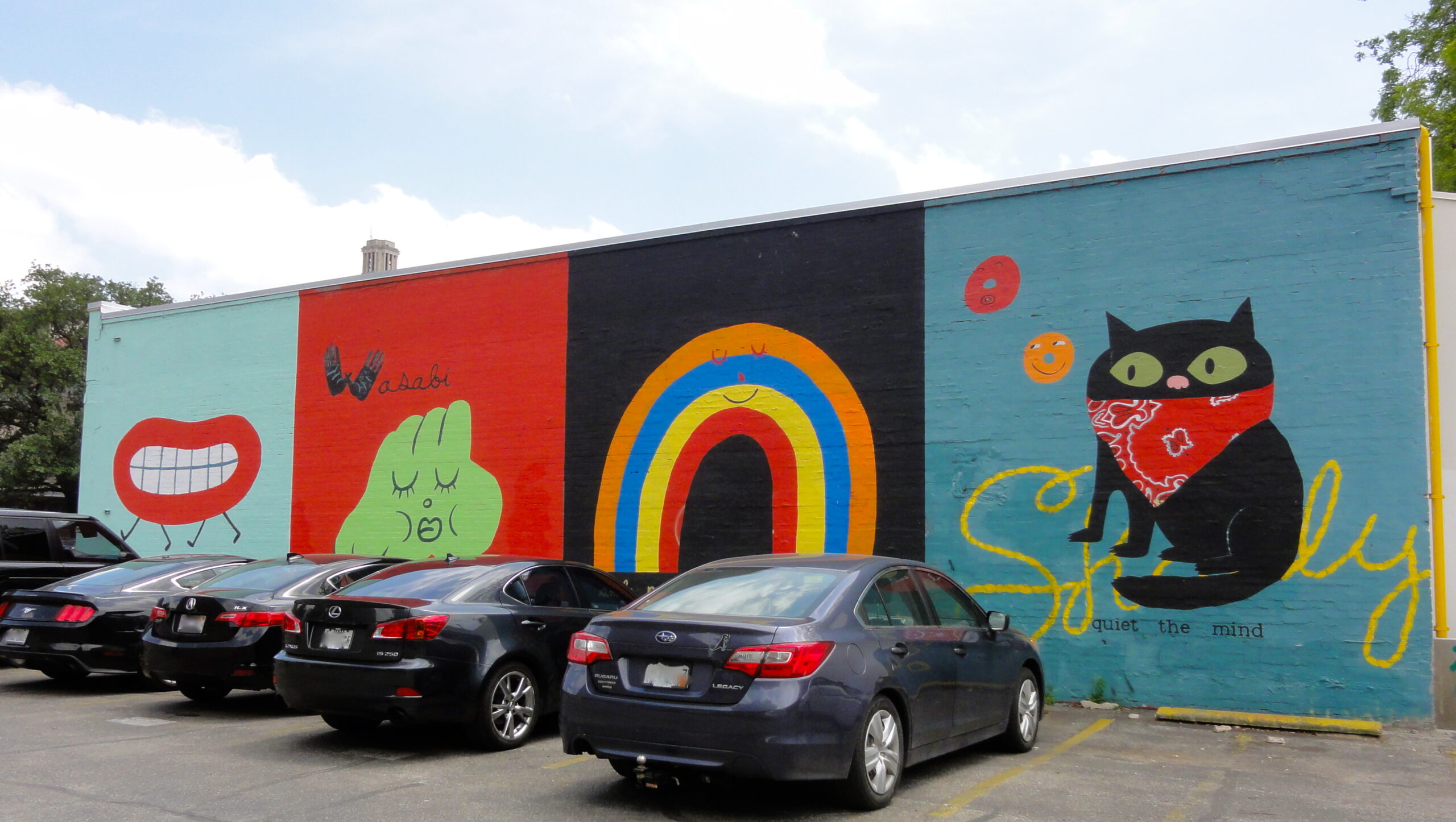 Wasabi Rainbow Cat Mural