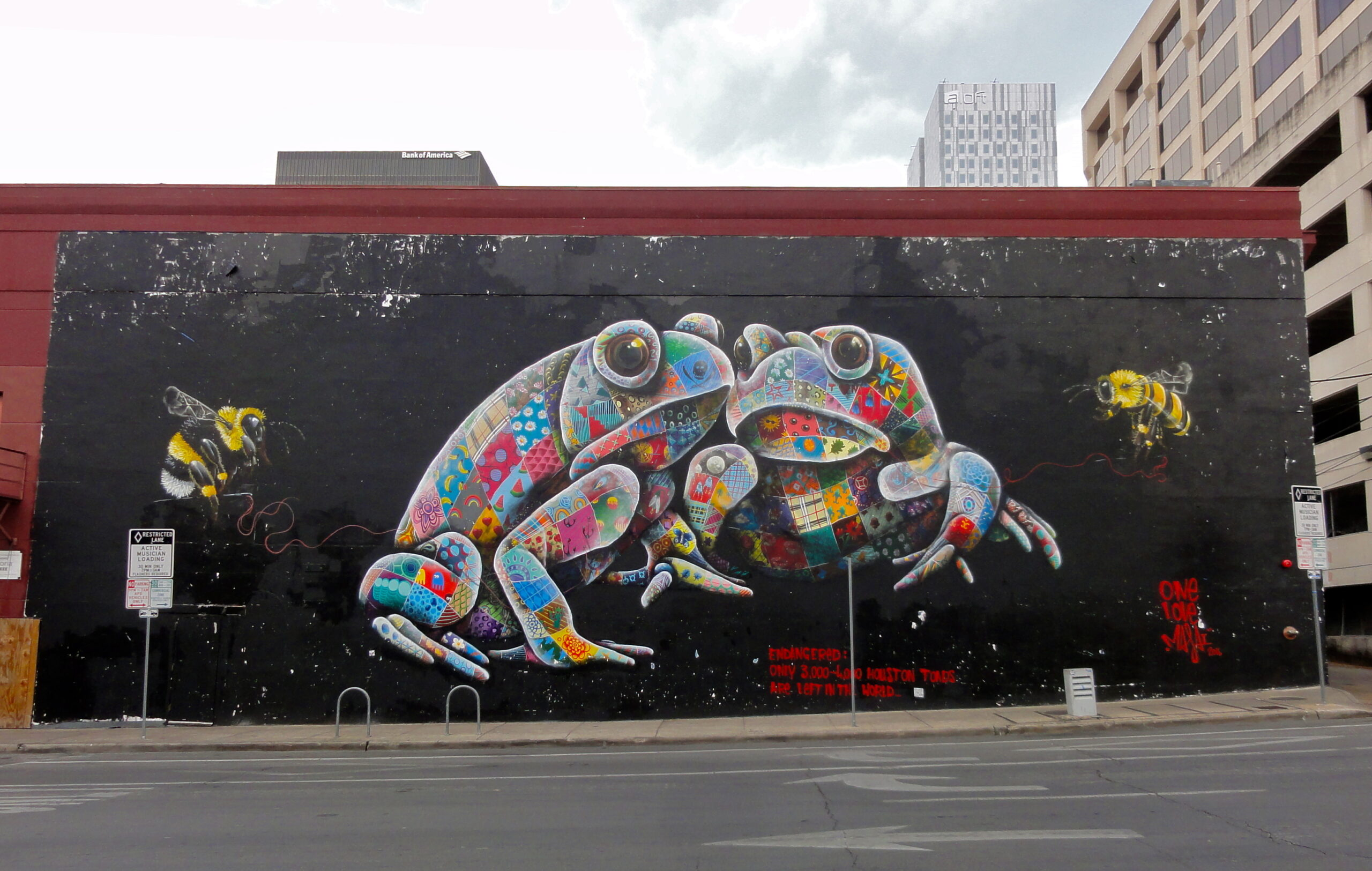 Houston Toads Mural
