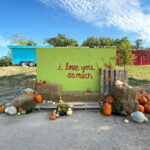 UPDATED! Here's All The Austin Pumpkin Patches, Halloween Fun, And Fall Festivals Happening in 2020