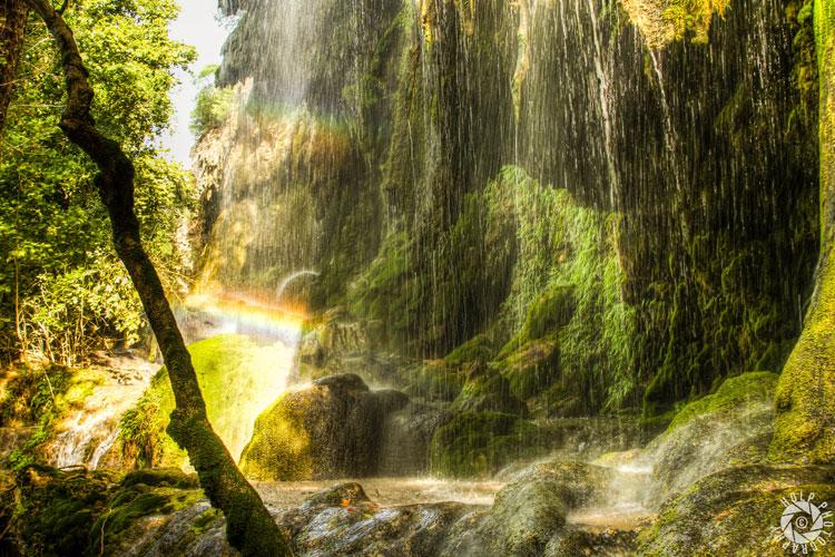 Daytrips - Gorman Falls