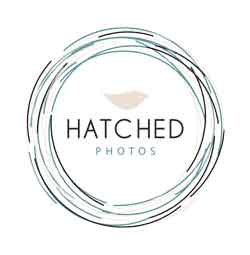 Hatched Photography   Free Fun in Austin