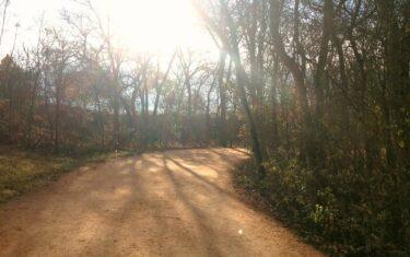 Running Trails in and Around Austin
