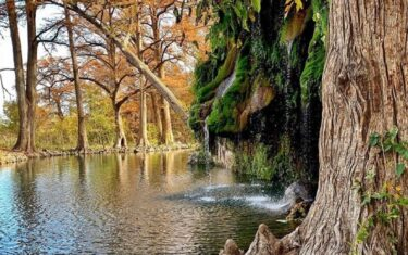 Absolutely Everything You Need to Know About Krause Springs