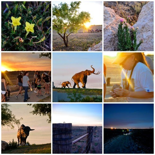 Austin Com 5 Free Things To Do In Lubbock Texas