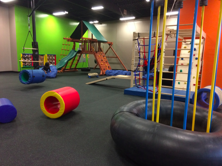 Little Land Pediatric Therapy & Play Gym