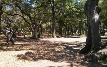 Park Profile: Springwoods Park in North Austin