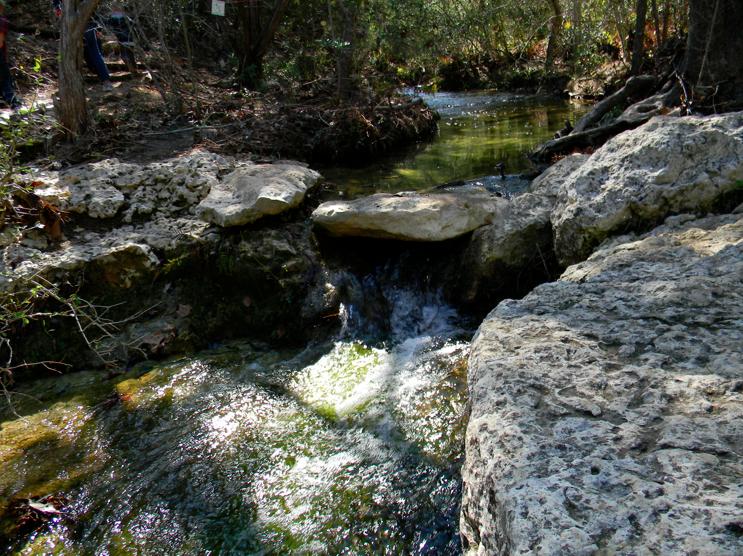 wild basin hike austin