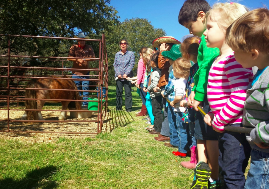 Farm Kids Austin