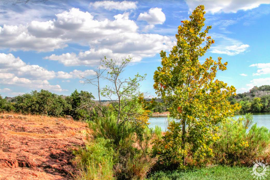 the banks of Inks Lake
