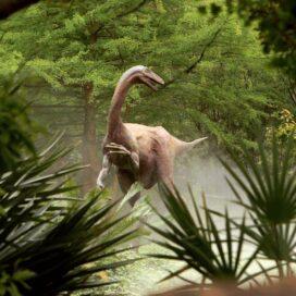 Prehistoric Garden