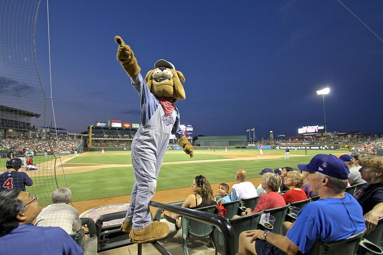 baseball mascot at a game
