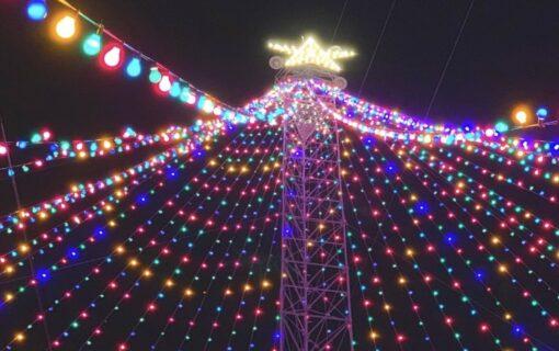 Free Fun in Austin – Events Happening November 23 Through 29, 2020