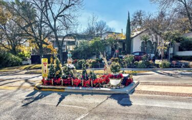 The Tiniest Park in Austin Is Also The Most Festive! Here's Why You Should Visit BEPI Park