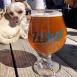 Your Complete Guide to the Best Austin Breweries